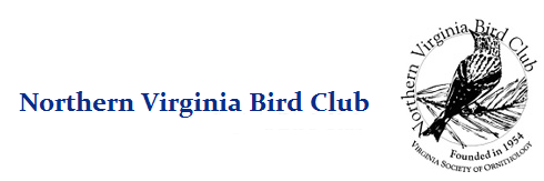 Northern Virginia Bird Club